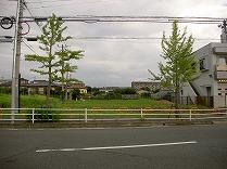 PICT5385.jpg